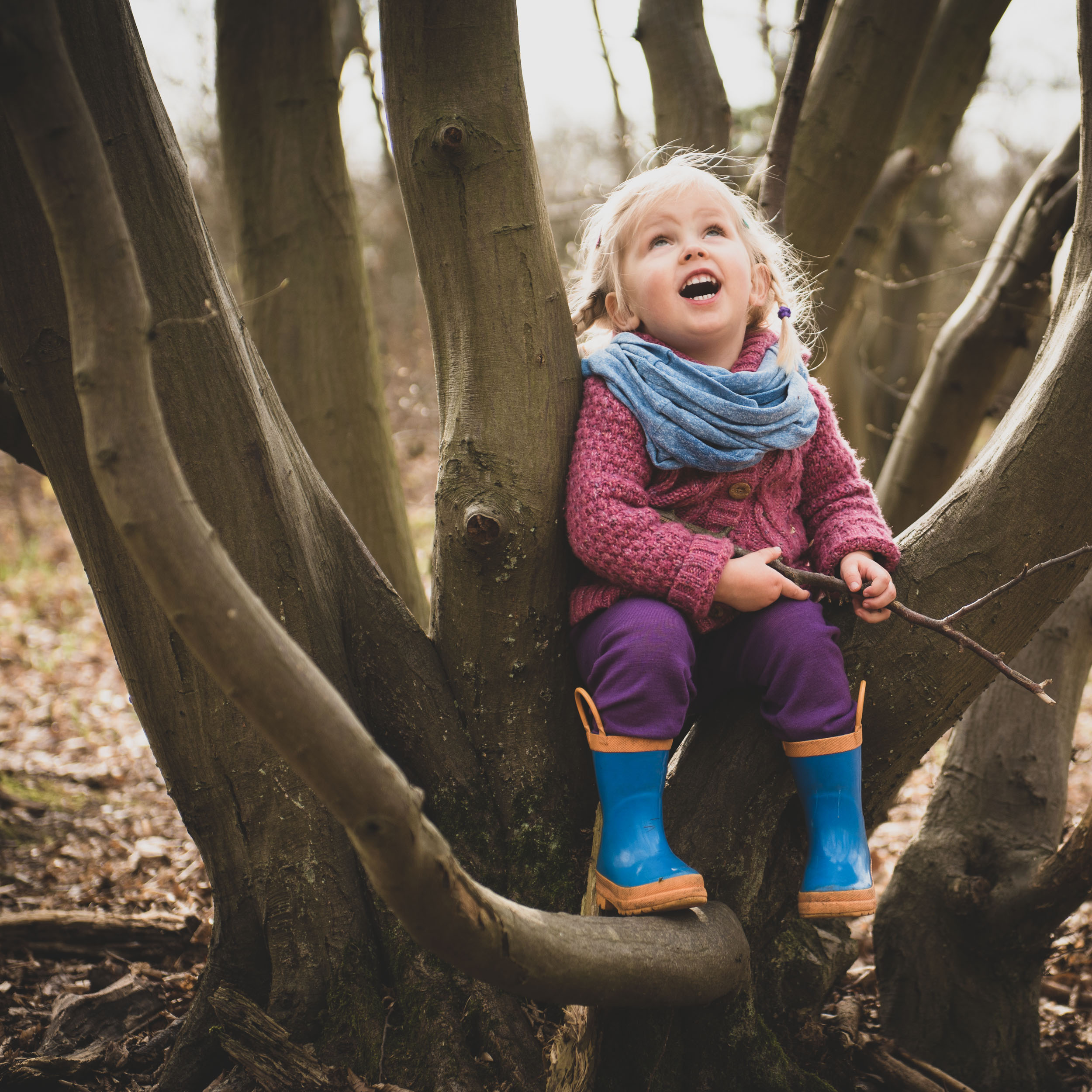 playing in a tree